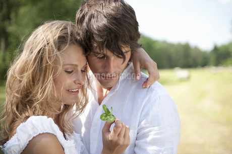 Young couple looking at clover in parkの写真素材 [FYI02125738]
