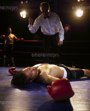 Portrait of a boxer sprawled on the floor of the ring out for the countの写真素材 [FYI02125951]