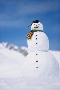 Portrait of snowmanの写真素材 [FYI02126016]