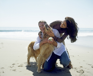 Portrait of a young couple playing with golden retriever on the beachの写真素材 [FYI02126274]