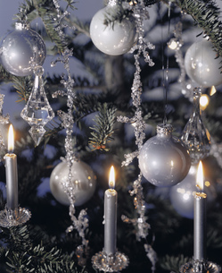 Detail view of a decorated Christmas treeの写真素材 [FYI02126918]