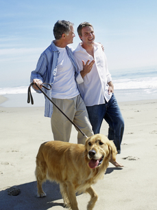 View of a couple walking golden retriever on the beachの写真素材 [FYI02127117]