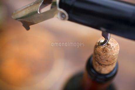Close up of corkscrew in wine corkの写真素材 [FYI02127138]