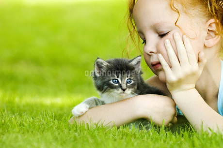 Young girl with kitten in grassの写真素材 [FYI02127239]