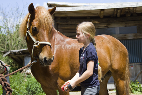Girl looking after horseの写真素材 [FYI02127350]