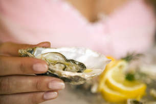 Close up of woman's hand holding raw oysterの写真素材 [FYI02127378]