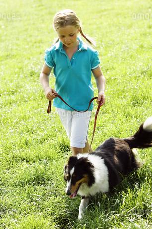Girl walking dog in grassの写真素材 [FYI02127804]