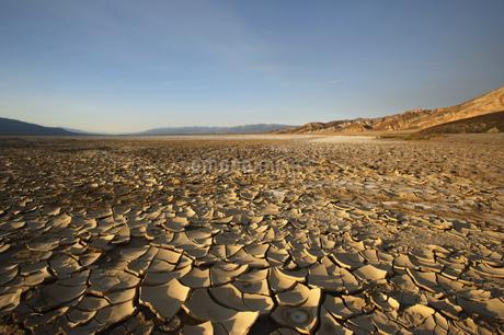 Cracked desert earth with crust of salt, Death Valley National Park, Nevada, Uの写真素材 [FYI02127987]