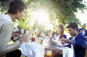 Group at outdoor dinner partyの写真素材 [FYI02128329]