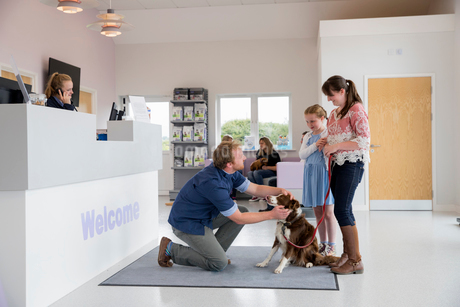 Pet dog owner with vet in surgery waiting room receptionの写真素材 [FYI02128386]