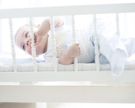 Baby boy in cotの写真素材 [FYI02128600]