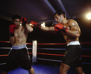 Portrait of two boxers fighting in the ringの写真素材 [FYI02128632]