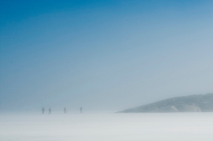 People ice-skating on rink near hill on a foggy dayの写真素材 [FYI02128864]
