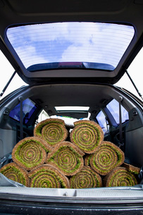 Rolled turfs stacked in car trunkの写真素材 [FYI02128951]