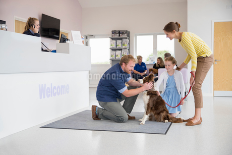 Pet dog owner with vet in surgery waiting room receptionの写真素材 [FYI02129127]