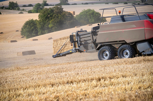 Tractor baler making straw bales in field after summer wheat harvest on farmの写真素材 [FYI02129368]