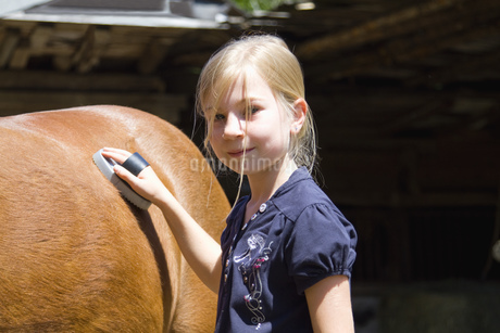Girl looking after horseの写真素材 [FYI02129704]