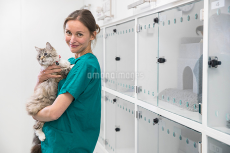 Nurse holding pet cat in recovery room of vet surgery smiling at cameraの写真素材 [FYI02129802]