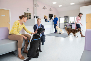 Pet dog owner with nurse in vet surgery waiting room receptionの写真素材 [FYI02130228]
