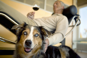 Mature man relaxing with dogの写真素材 [FYI02130241]