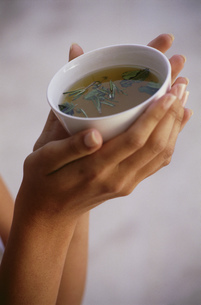 Close-up, woman's hands holding a cup of teaの写真素材 [FYI02130655]