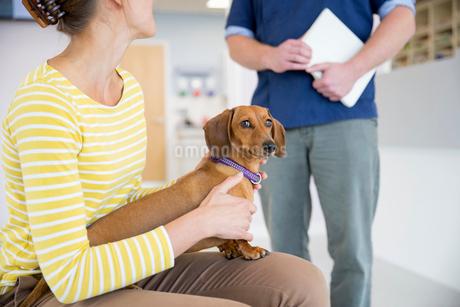 Pet dog owner in vet surgery waiting room receptionの写真素材 [FYI02130874]