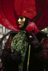 Costumed Carnival participant in Venice, Italyの写真素材 [FYI02130946]