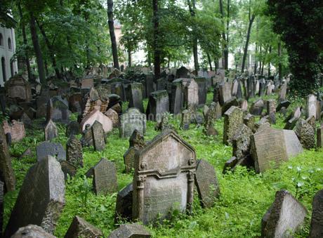 Jewish cemetery in Pragueの写真素材 [FYI02131112]