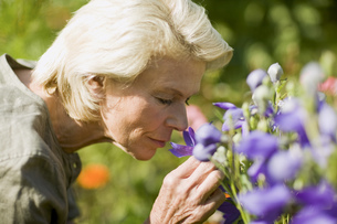 Senior woman smelling flowersの写真素材 [FYI02131177]