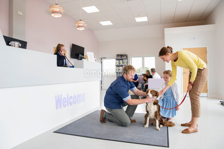 Pet dog owner with vet in surgery waiting room receptionの写真素材 [FYI02131241]