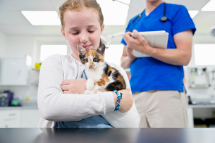 Vet with pet kitten cat in surgery by table with child owner looking at cameraの写真素材 [FYI02131381]