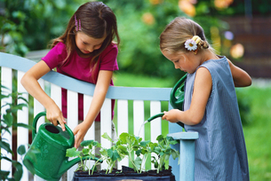 Two young girls watering plants in outdoorsの写真素材 [FYI02131448]