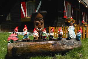 View of miniature garden gnomes lined up on a log, Maltatal, Kaernten, Austriaの写真素材 [FYI02131470]