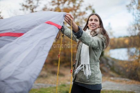 Young woman setting up tent while looking away in forestの写真素材 [FYI02133489]