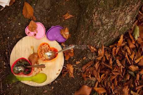 Directly above shot of lunch boxes on wooden board at camping siteの写真素材 [FYI02134165]