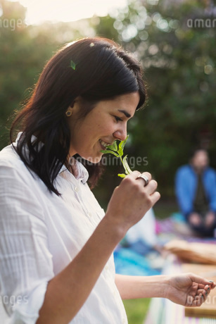 Side view of happy young woman smelling herb while preparing food in backyardの写真素材 [FYI02136636]