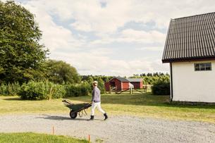 Farm worker with wheelbarrow walking on road by barnの写真素材 [FYI02137344]