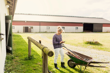 Woman using smart phone while standing by wheelbarrow at farmの写真素材 [FYI02137388]