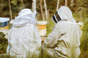 Rear view of beekeepers sitting on fieldの写真素材 [FYI02137514]