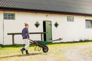 Female farm worker walking with wheelbarrow on road by barnの写真素材 [FYI02137868]