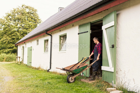 Man pushing wheelbarrow while coming out of barn at farmの写真素材 [FYI02137882]