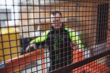 Manual worker in reflective clothing seen through metal grateの写真素材 [FYI02139141]
