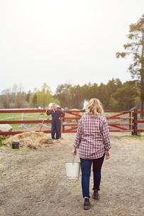 Rear view of female farmer carrying bucket in farmの写真素材 [FYI02140350]