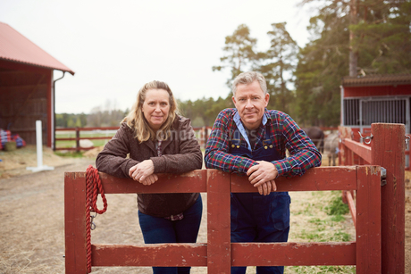 Mature couple leaning on fence in farmの写真素材 [FYI02143749]