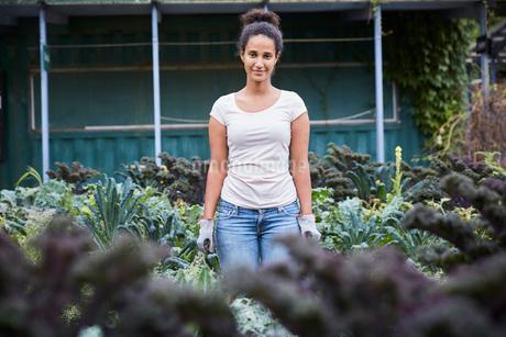 Portrait of gardener standing amidst plantsの写真素材 [FYI02143763]