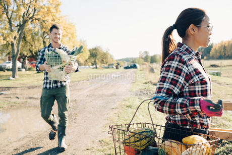 Male and female farmers carrying baskets of organic vegetables at fieldの写真素材 [FYI02145931]