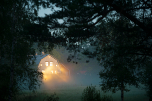 Illuminated house seen through branches in forest during foggy weatherの写真素材 [FYI02147043]