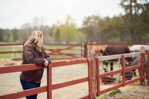 Female farmer leaning on fence in farmの写真素材 [FYI02147227]
