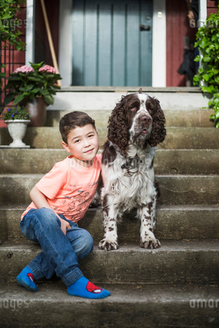 Portrait of smiling boy sitting with English Springer Spaniel on steps in back yardの写真素材 [FYI02147430]