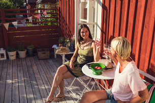 High angle view of happy mature female friends raising toast in back yard on sunny dayの写真素材 [FYI02147535]